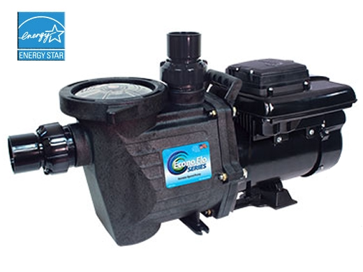 Waterway Econo Flo In Ground Vsa Variable Speed Pump 1