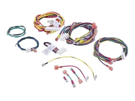 Raypak Wire Harness 207