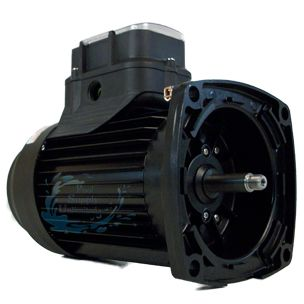 Marathon Electric Impower Variable Speed Square Flange