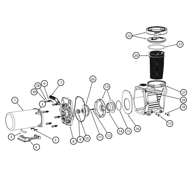 Waterway SMF .75HP Inground Pool Pump 115/208-230V | SMF-107 Parts Schematic