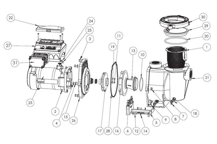 Sta-Rite IntelliPro 3HP Ultra Energy Efficient VS+SVRS Pool Pump 230V | P6E6XS4H-209L | 013002 Parts Schematic