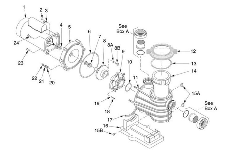 Sta-Rite Dyna-Pro E 1.5HP Standard Efficiency Pool Pump Up Rated 115V 230V | MPRA6F-206L Parts Schematic