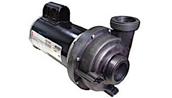 TheraMax 2.5HP 230V Sundance/ Jacuzzi Pump Baseless | 6500-341