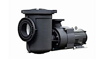 Pentair EQ500 Series 5HP Nema Premium Efficiency Single Phase Commercial Pool Pump with Strainer 230V   340030