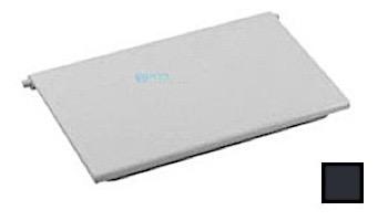 AquaStar Skimmer Weir Plate with 2 Clips   Dark Gray   SKWD105