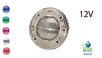 Pentair IntelliBrite 5G LED COLOR Spa Light for Inground Spas | 12V 30' Cord | 640053 640130