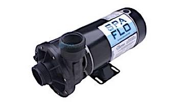 Waterway Spa Flo Spa Pump | 2-Speed 1.0HP 115V 48-Frame Side Discharge | 3420410-0Z