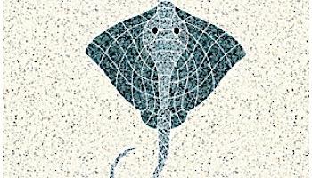 AquaStar Swim Designs Stingray Stencil Only   White   F1013-01
