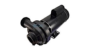 TheraFlo 2.5HP 2SP 240V Sundance/ Jacuzzi TheraMax Pump | 6500-760