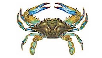 "Porcelain Mosaic Blue Crab Pool Mosaic   11"" x 8""   PORC-BC57"