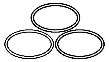 Paramount Quartz Tube Seal O-Ring, 3 Pack | 005-422-5103-00