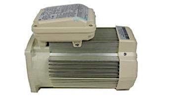 Pentair Replacement Single Speed TEFC Super-Duty Motor | 2HP | 56 Frame | 208-230V | Black | 354816S