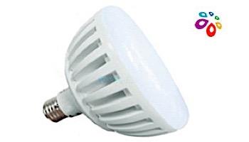 J&J Electronics ColorSplash LXG-W Series RGB + White LED Pool Lamp | 120V | LPL-P2-RGBW-120