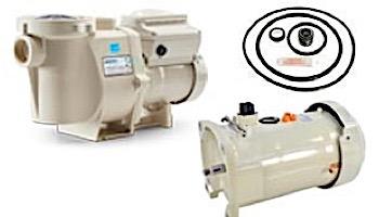 Seal & Gasket Kit for Pentair WhisperFlo & IntelliFlo Pool Pumps | GO-KIT32 APCK1027