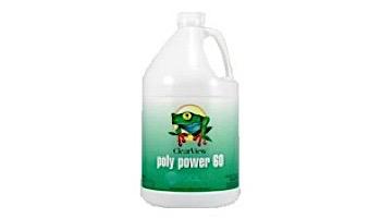 ClearView Poly Power 60 Algaecide | 32 oz | CVLPPQT12