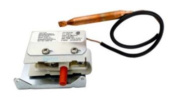 Coates High Temperature Limit Switch   22003820
