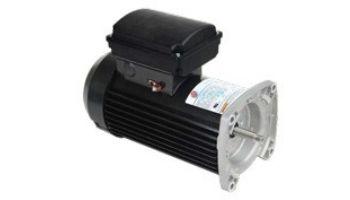 Nidec Motor Corp Aqua Shield Pro TEFC Square Flange Pool & Spa Motor   Premium High Efficiency   1.25 THP 115/208-230V 48 Frame   TEQ125