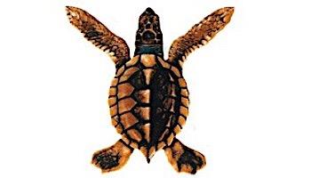 """Porcelain Mosaic Turtle Brown   Baby A 5""""x5""""   PORC-ST20A-BR"""