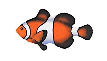 Porcelain Mosaic Reef Fish   Clown Fish   PORC-CF9-5