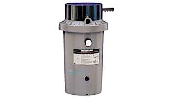 Hayward D.E. Perflex Extended Cycle Pool Filter   34 sq. ft.   68 GPM   W3EC65A