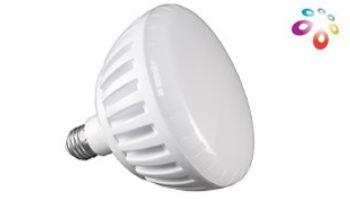 J&J Electronics ColorSplash LXG Series LED Pool Lamp   120V   LPL-P2-RGB-120