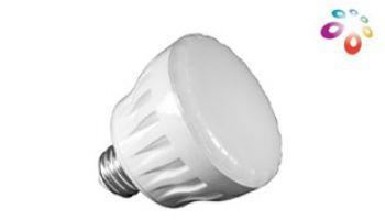 J&J Electronics ColorSplash LXG Series LED Spa Lamp | 120V | LPL-S2-RGB-120