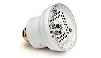 J&J Electronics PureWhite 2 Retrofit LED Light Bulb for FULL SIZE Spa Lights | 120V | LPL-P2-WHT-120-S