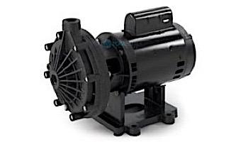 Pentair Letro Universal Booster Pump .75HP | 115V/230V | EC-LA01N
