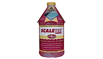 Easy Care Scaletec Plus Pool Surface and Tile Descaler Plus Stain Remover 64 oz | 20064