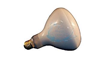 Light Bulb Medium Base 100W 12V R30 | BR30CL100/12V
