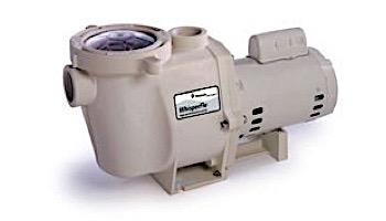 Pentair WhisperFlo Standard Efficiency Pool Pump | 115/230V 1HP Full Rated | WF-4 | EC-015583