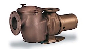 Pentair C-Series 5HP Standard Efficiency 3-Phase Commercial Bronze Pump with Strainer   200-208V   CHK-50   347941