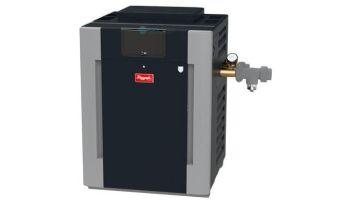 Raypak Digital ASME Natural Gas Commercial Swimming Pool Heater | 200k BTU Cupro Nickel Heat Exchanger | Altitude 0-1999 Ft | C-R206A-EN-X 010198 | B-R206A-EN-X #50 017399