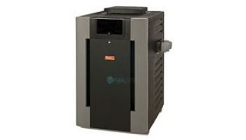 Raypak Digital Natural Gas Pool Heater 266K BTU | Electronic Ignition | High Altitude 2000-6000 Ft #51 | P-R266A-EN-C 009221 P-M266A-EN-C 009967