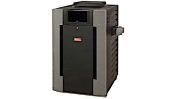 Raypak Digital Propane Gas Pool Heater 266k BTU | Electronic Ignition | P-R266A-EP-C 009225 P-M266A-EP-C 009975
