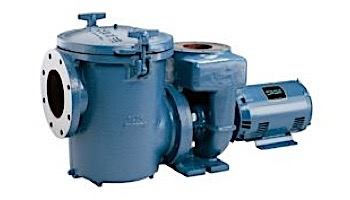 Sta-Rite CSP Series 10HP Nema Single Phase Cast Iron Pool Pump Without Strainer | 230V | CSPHL-143