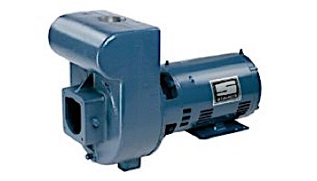 Sta-Rite D-Series 3HP Standard Efficiency Single Phase Commercial Pool Pump 230V   DHH-169