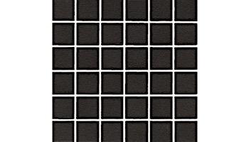 National Pool Tile Unglazed 1x1 Series   Raven Black   0A3411GMS1P