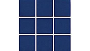 National Pool Tile Unglazed 2x2 Series #R08 | Sapphire Sky | 0R0822GMS1P