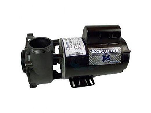 "Waterway Executive 56 Spa Pump   2-Speed 2HP 230V 56-Frame 2"" Intake 2"" Discharge   3720821-1D"
