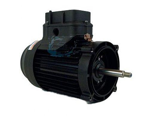 Marathon Electric Impower Variable Speed 56 Frame Threaded