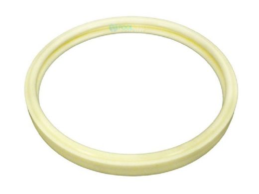 Pentair Intellibrite 5G LED Pool Light Lens and Gasket Assembly | 619864Z