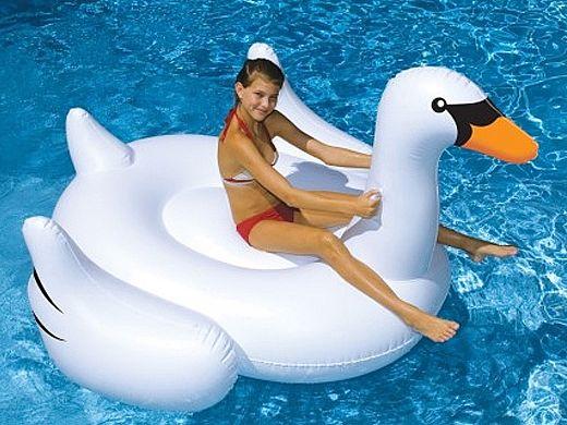 Giant Swan Floatie | NT268