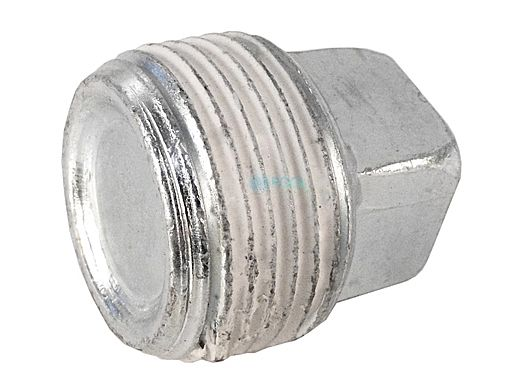 """Pentair 3/4"""" Pipe Plug for Max-E-Therm Heater Water System 