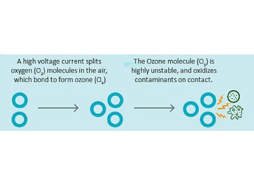 DEL OZONE Spa Eclipse Corona Discharge Ozone Generator   1,000 Gallons   100V/250V   Aqua Mini JJ Cord   ECS-1RPSD-U