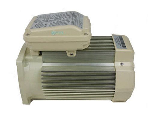Pentair Replacement Single Speed TEFC Super-Duty Motor | 5HP | 56 Frame | 208-230V | Almond | 354819S