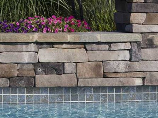 National Pool Tile Safari 6x6 Series | Multicolor | SFR-MULTI