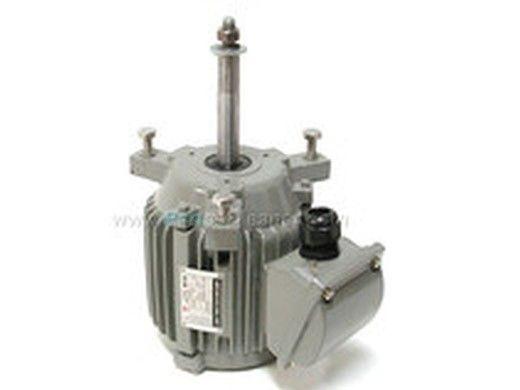 Glacier Pool Coolers 1/2HP Fan Motor | Teco | FM-1/2-T