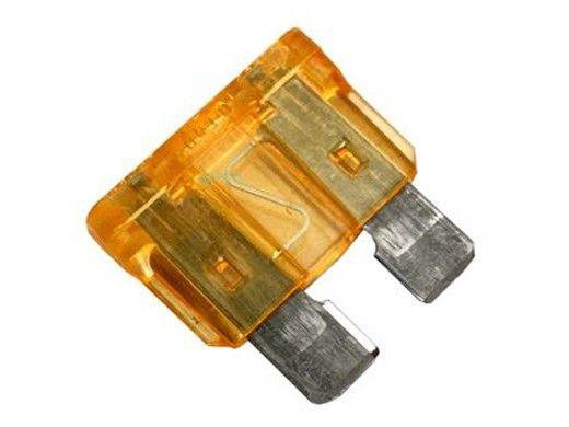 Raypak 5 AMP Fuse | 013733F
