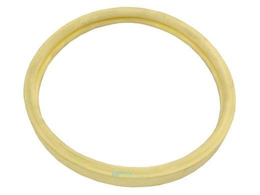 Pentair Kit Lens Gasket SUNBRTII   79101601Z   620400Z